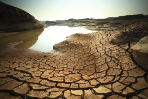 Drought s-487921873
