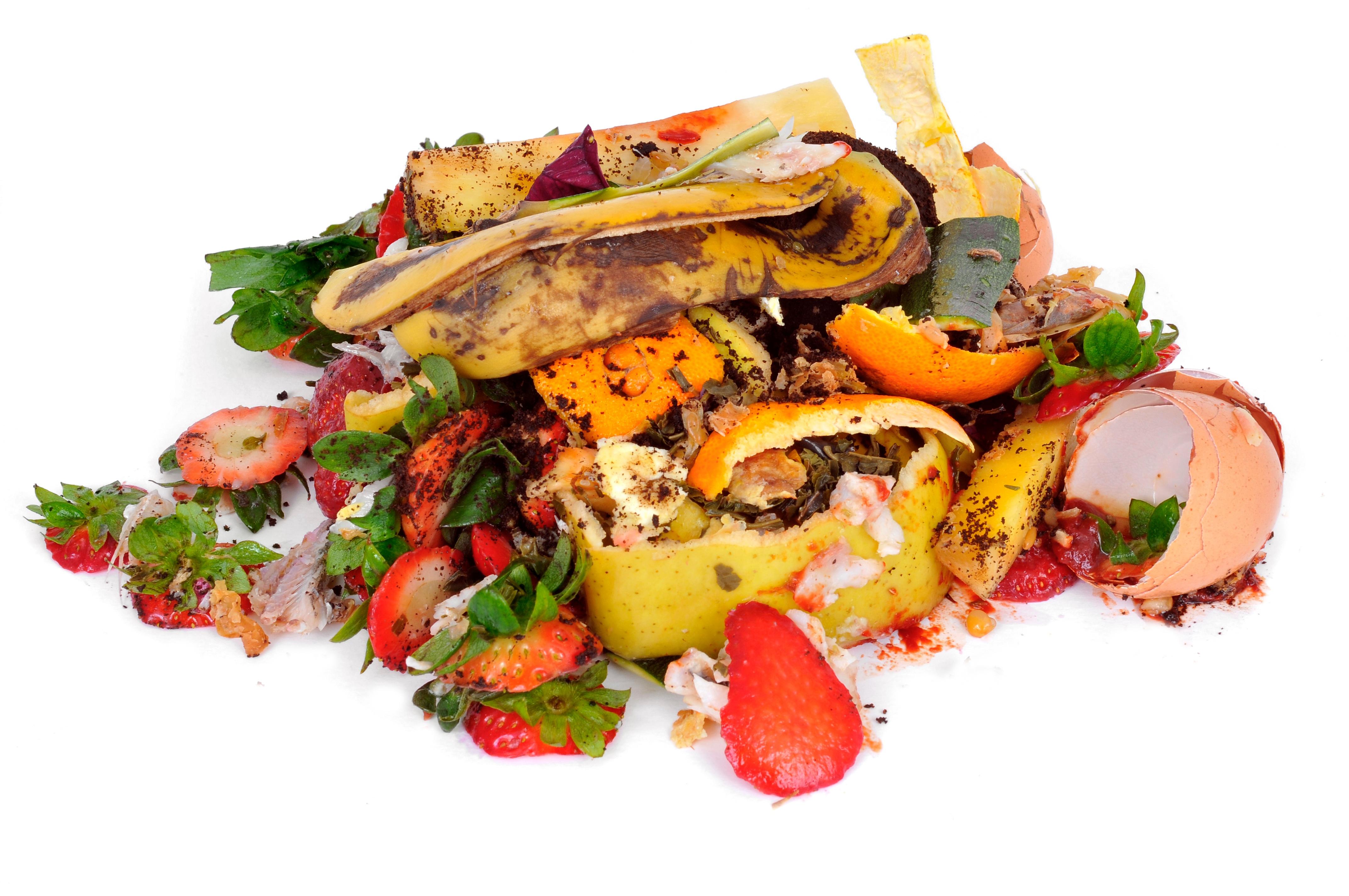 Food_Waste-1.jpg